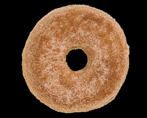 Pumpkin Spice Sugar RAISED Donut Doughnut